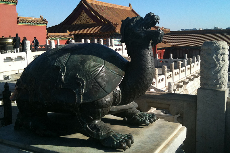 Fake turtle waits ... citta proibita
