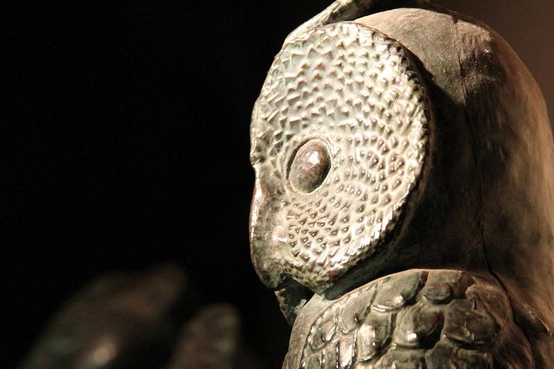 Owl in Museum
