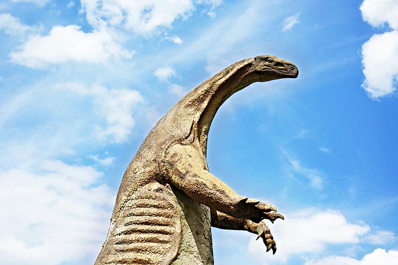 Funny Dinosaur Neck